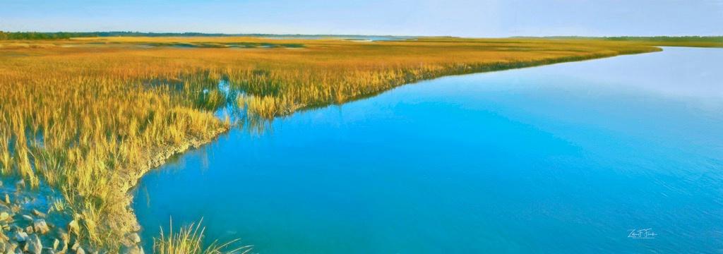 Marsh at Kiawah Island #2 - ID: 15592206 © Zelia F. Frick