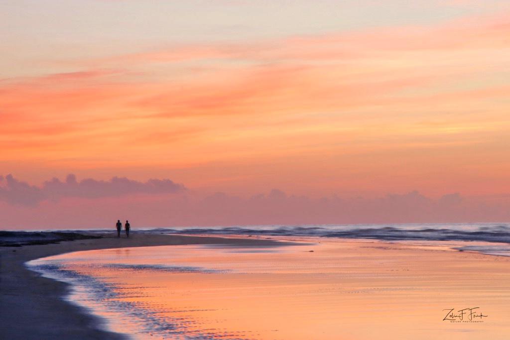 Morning Walk on the Beach - ID: 15592224 © Zelia F. Frick