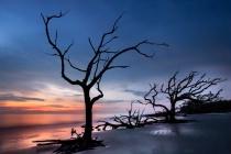 Jekyll Island Silhouettes