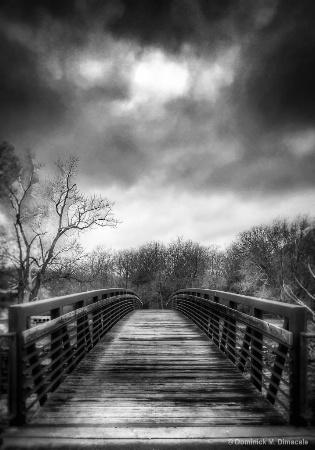 ~ ~ BRIDGE TO NOWHERE ~ ~