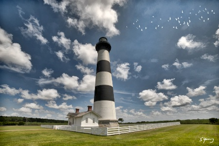 Bodie Island Lighthouse With Birds