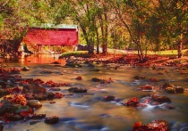 the red covered bridge