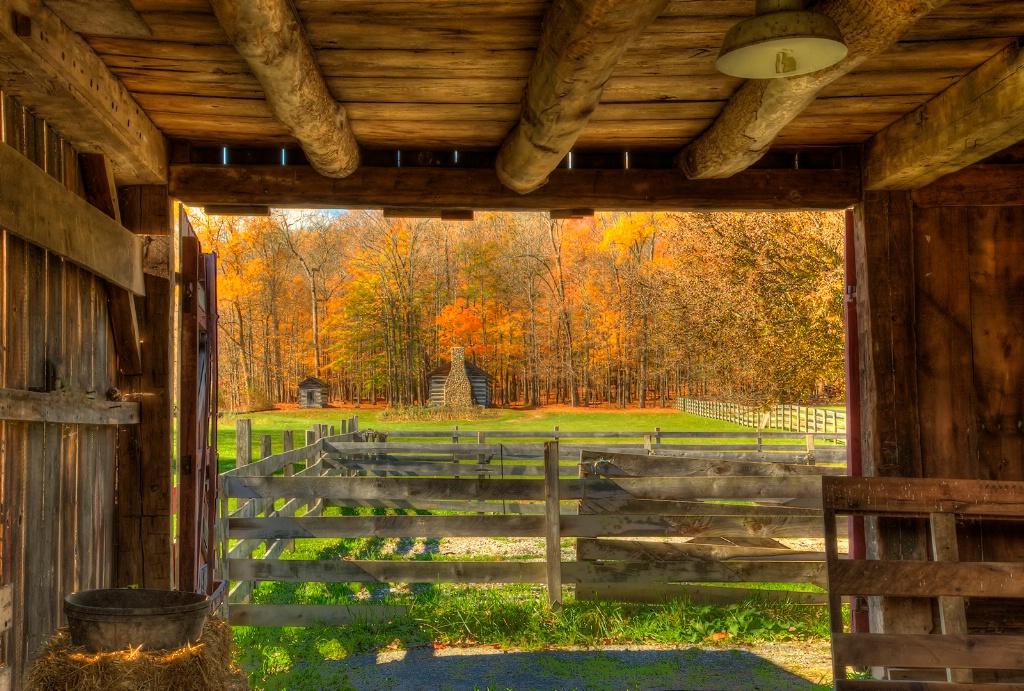 Through the Barn Door
