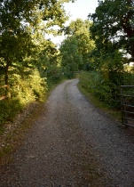 Countryside track!