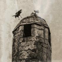 Tower Landing