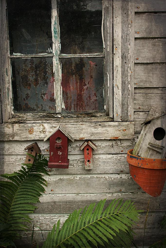 Old Window With Birdhouses