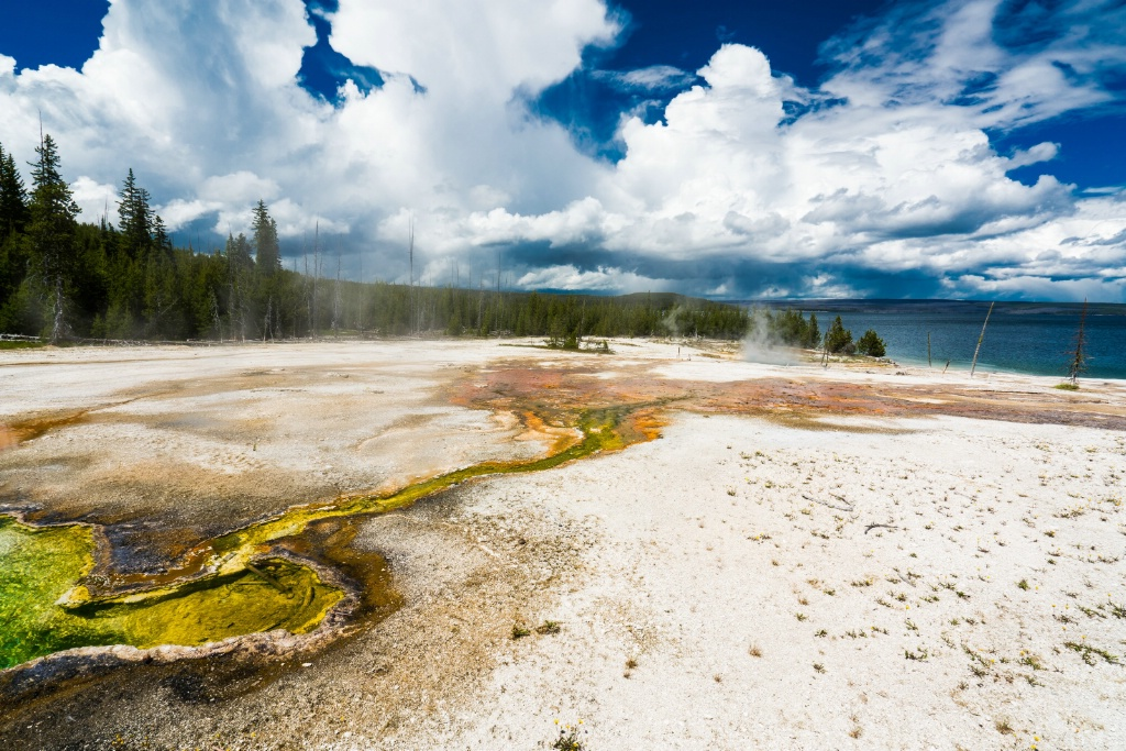 Yellowstone Green  - ID: 15601412 © Stanley Singer