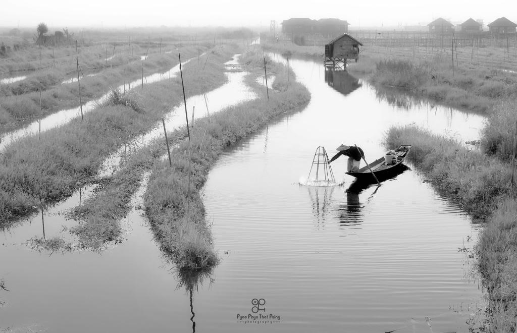 Inle fisherman - ID: 15609038 © Pyae Phyo Thet Paing