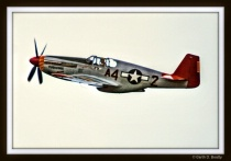 A Tuskegee Fighter