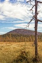 Snag In The Finnish Lapland