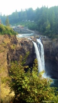 Snoqualmie Falls Floral Perspective