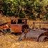 2Field of Rust - ID: 15616602 © Eric B. Stogner
