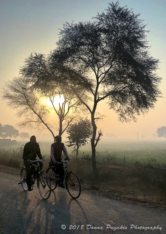 Sunrise Cycling to Work