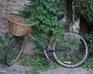 Provence Cycle