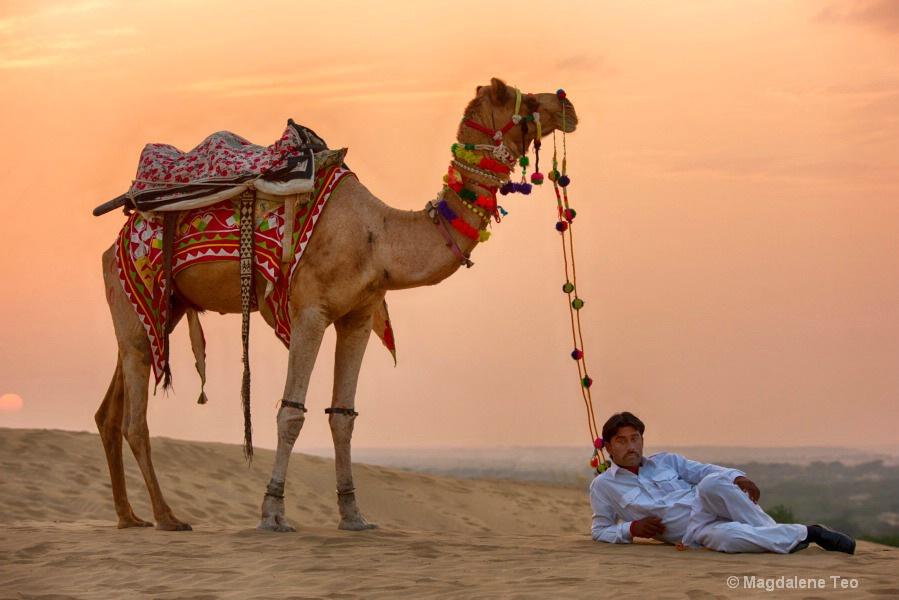 Flashback to Rajasthan India - Bedouin II - ID: 15620347 © Magdalene Teo