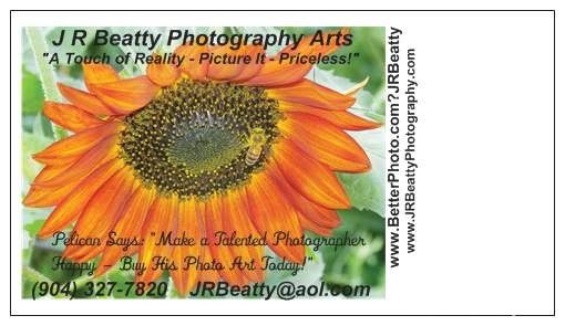 BEE HI NOTE-BOOKMARK - ID: 15620789 © J.R. Beatty