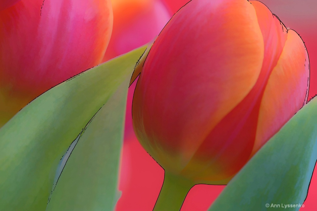 Red Tulips Green Leaves - ID: 15621811 © Ann Lyssenko