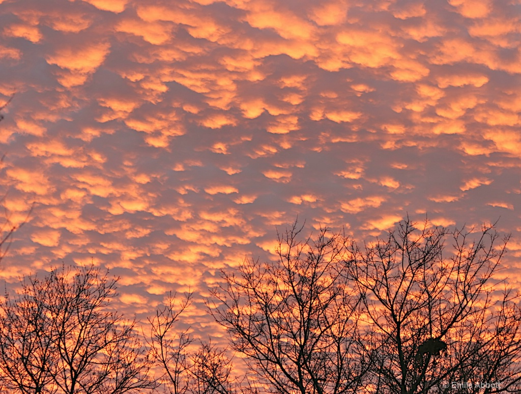 Valentine-Sunset-2006