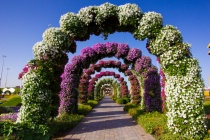 Colorful arches!