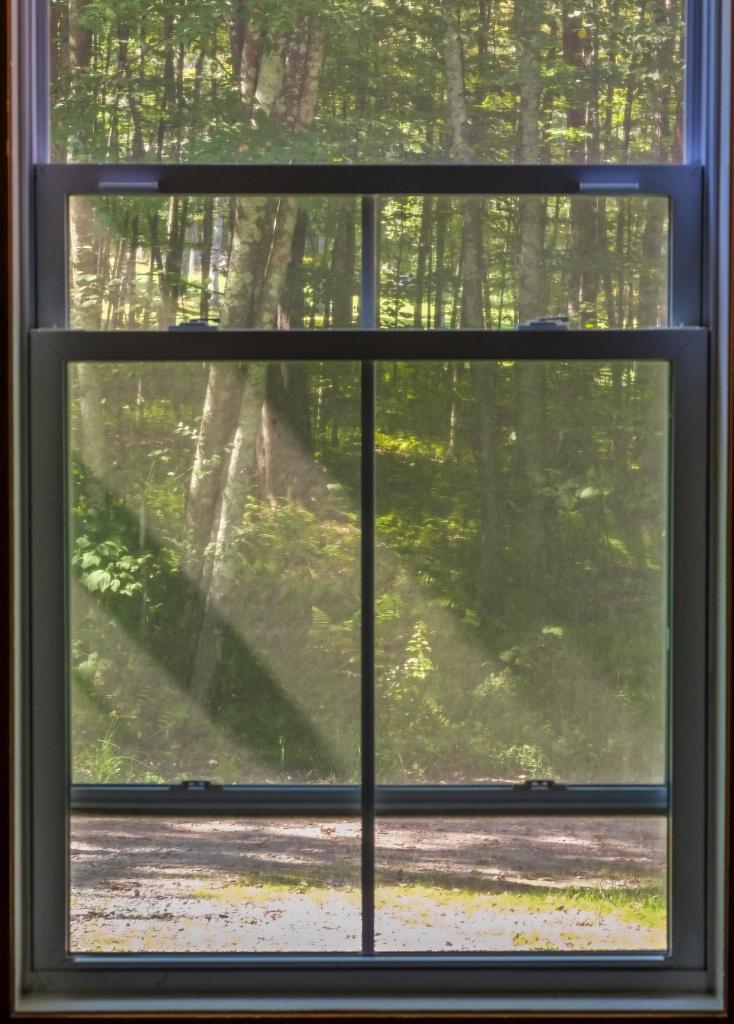morning rays through the window pane - ID: 15626405 © Nancy Auestad