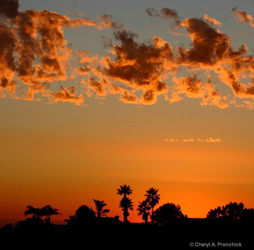 Sunset09.JPG - ID: 15628154 © Cheryl A. Pronchick