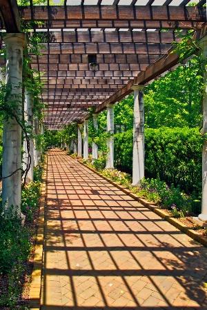 Walkway Daniel Stowe