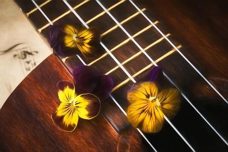 Viola Waltz