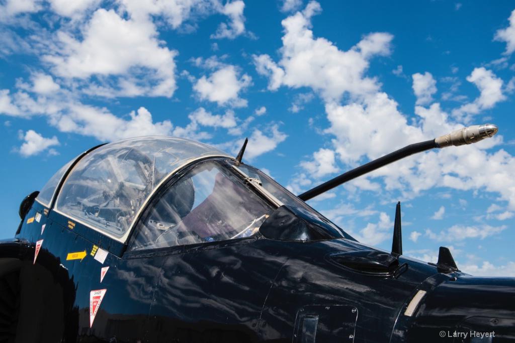 The Bomber - ID: 15633442 © Larry Heyert