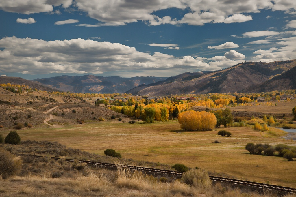 Golden Aspens - ID: 15633634 © Susan Johnson