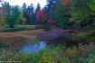 Majors Pond