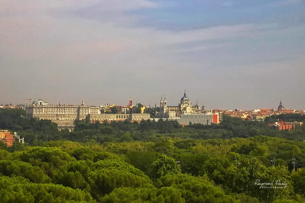 Royal Palace from a Distance