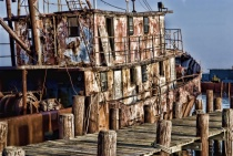 Textured Boat Ruin