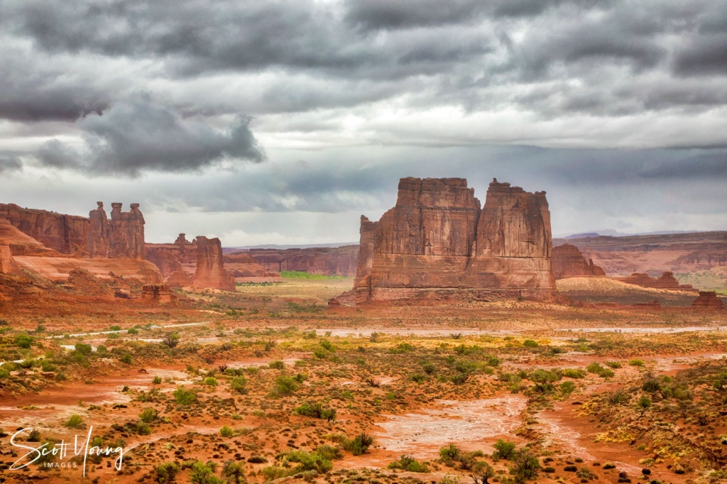 Courthouse Towers; Arches National Park - ID: 15640598 © Richard S. Young