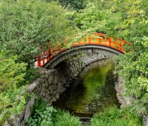 Sacred bridge in ancient forest