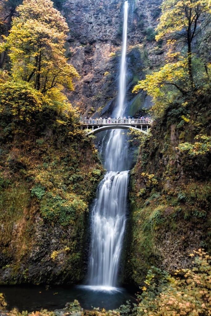Multnomah Falls  2307 - ID: 15643029 © Karen Celella