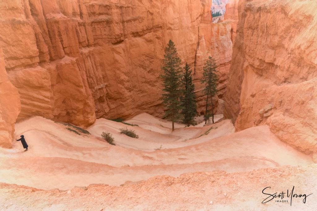 Switchbacks on Navaho Trail; Bryce Canyon, UT - ID: 15647440 © Richard S. Young