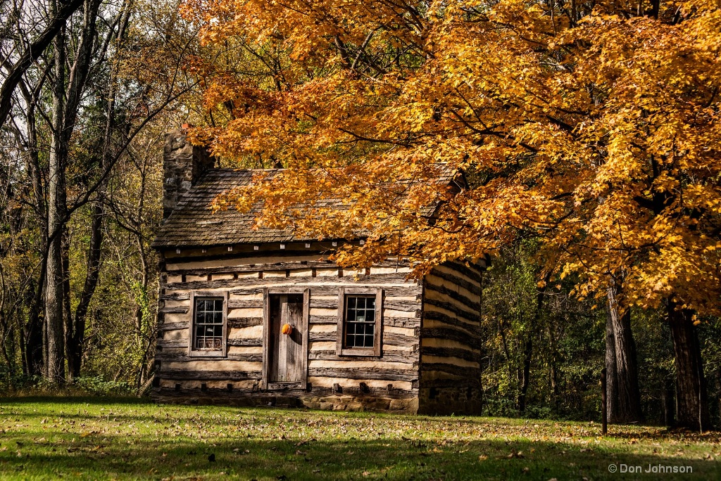 Log Cabin-Fall 3-0 F LR 11-1-18 J002 - ID: 15648140 © Don Johnson