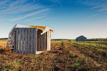 Fallen Crates On An Autumn Field