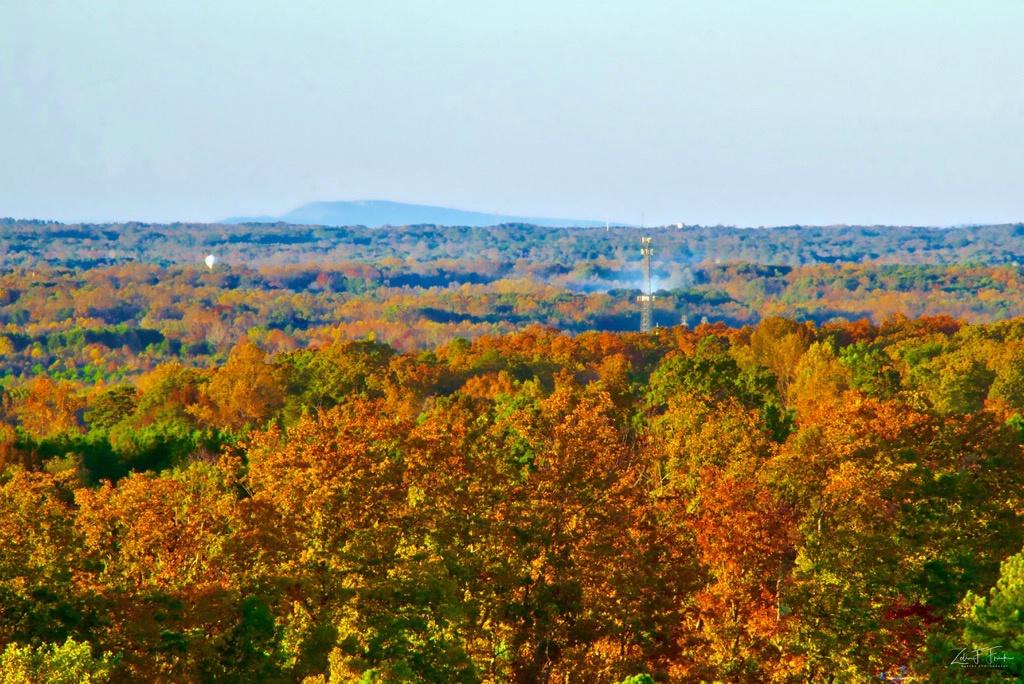 Dunn;s Mtn View toward Winston-Salem - ID: 15653031 © Zelia F. Frick