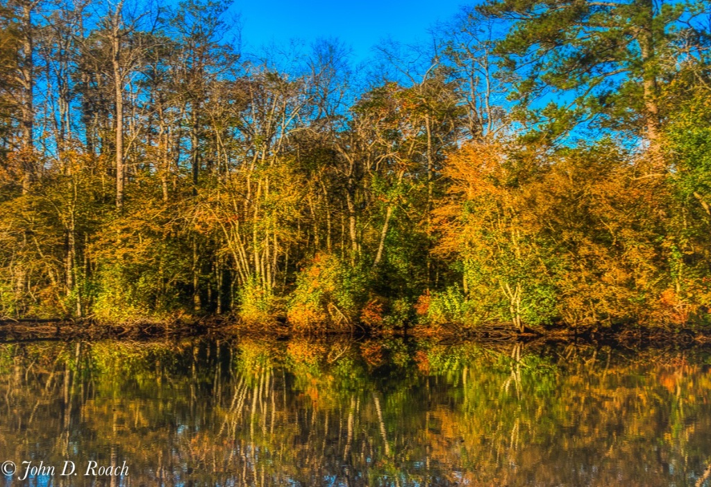 Autumn Reflections on the River - ID: 15653344 © John D. Roach