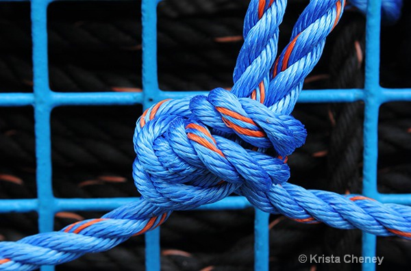 Lobster trap knot - ID: 15655304 © Krista Cheney