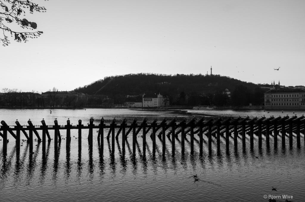 Vltava east bank