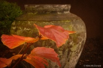 Autumn Leaves and Urn