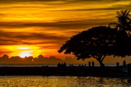 Sunset Spot  9704