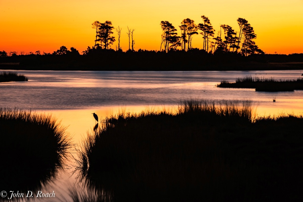 A Morning at the Marsh - ID: 15661944 © John D. Roach