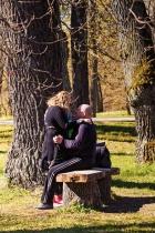 Hug Under The Trees