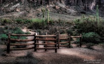 Boundry Fence to Lost Dutchman
