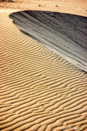 Dune curve