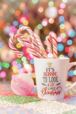 Peppermint Christmas #1