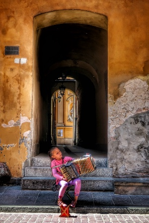 ~ ~ THE MUSICIAN ~ ~